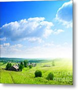 Green Grasses Metal Print by Boon Mee