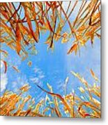 In The Wheat Metal Print by Alexey Stiop