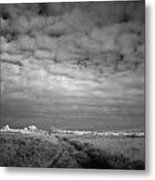 Infrared Picture Of The Nature Area Dwingelderveld In Netherlands Metal Print by Ronald Jansen