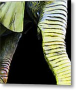 It's A Long Story - Unique Elephant Art Metal Print by Sharon Cummings