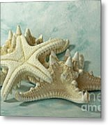 Journey To The Sea Starfish Metal Print