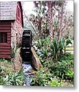 Jungle Water Metal Print by Will Boutin Photos