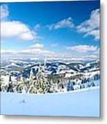 Landscape With Snow Covered Trees Metal Print