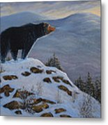 Last Look Black Bear Metal Print