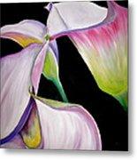 Lilies Metal Print by Debi Starr