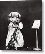 Little Fiddler Metal Print