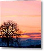Lone Tree 1 Metal Print by Rebecca Adams