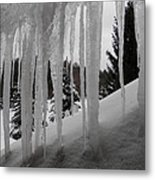 Looking Out The Window Metal Print by Margaret McDermott
