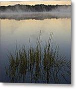 Morning Mist At Sunrise Metal Print