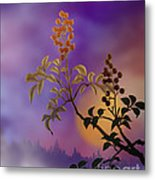 Nandina The Beautiful Metal Print by Bedros Awak