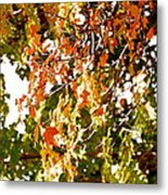 Nature In The City Metal Print by Jocelyne Choquette
