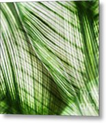 Nature Leaves Abstract In Green Metal Print by Natalie Kinnear