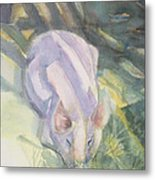 Ode To A Pig Metal Print by Grace Keown