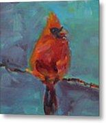 Oklahoma Cardinal Metal Print by Susie Jernigan