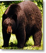 One Big Bad Momma Metal Print by Lori Tambakis