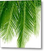 Palms Green Metal Print