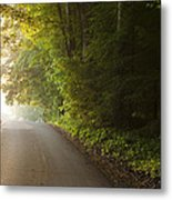 Path To The Light Metal Print by Andrew Soundarajan