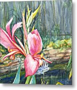 Peach Canna By The Pond Metal Print by Patricia Allingham Carlson