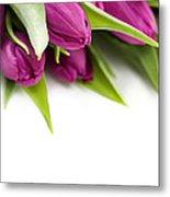 Pink Tulip Metal Print by Boon Mee