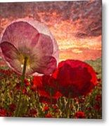 Poppy Sunrise Metal Print by Debra and Dave Vanderlaan