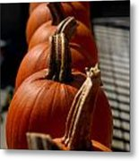 Pumpkins In A Row Metal Print by Amy Cicconi