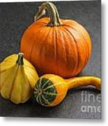 Pumpkins On A Slate Plate Metal Print