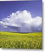 Rainstorm Over Canola Field Crop Metal Print by Ken Gillespie