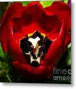 Red And Tulip Metal Print by Rebecca Christine Cardenas