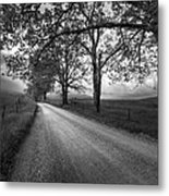 Road Not Traveled Metal Print by Jon Glaser
