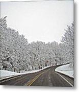 Road To Winter Metal Print