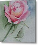 Rose 1 Metal Print by Nancy Edwards