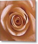 Rose Spiral 3 Metal Print by Kim Lagerhem