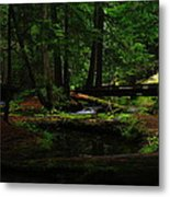 Ross Creek Montana Metal Print
