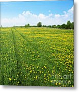Rural Road Flower Metal Print by Boon Mee
