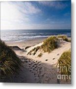 Sand Dune Metal Print by Boon Mee