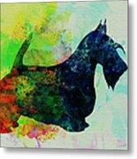 Scottish Terrier Watercolor Metal Print by Naxart Studio