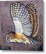 Silent Night Owl Metal Print by Anne Shoemaker-Magdaleno