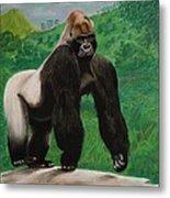 Silverback Gorilla Metal Print by David Hawkes