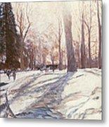 Snow At Broadlands Metal Print