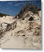 Snow White Dunes Metal Print