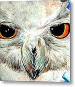 Snowy Owl - Female - Close Up Metal Print by Daniel Janda