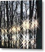 Spirits In The Woods Metal Print by Sharon Costa