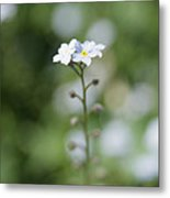 Stand Strong Metal Print by Kim Lagerhem