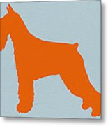 Standard Schnauzer Orange Metal Print