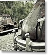 Still Here Metal Print by Merrick Imagery