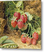 Strawberries And Peas Metal Print by John Sherrin