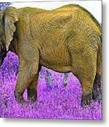 Styled Environment-the Modern Elephant Bull Metal Print