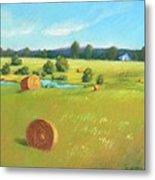 Summer Meadow Metal Print by Celine  K Yong