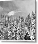 Taking Refuge - Grand Teton Metal Print by Sandra Bronstein