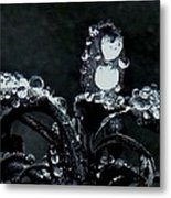 Tears Metal Print by Sharon Costa